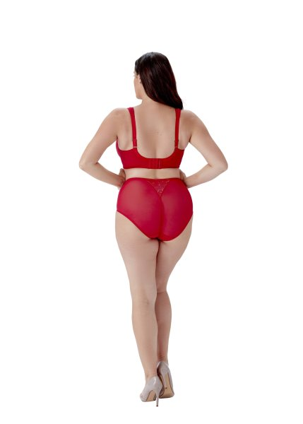 Berlei Lingerie Beauty Everyday Taillenhose Red